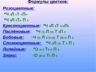 Формулы цветков: Розоцветные: *Ч 5Л 5Т ∞П∞ *Ч 5Л 5Т∞ П 1 Крестоцветные: *Ч 4Л