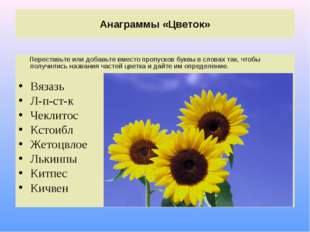Анаграммы «Цветок» Переставьте или добавьте вместо пропусков буквы в словах т