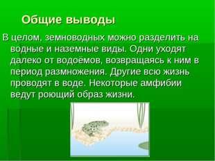 Общие выводы В целом, земноводных можно разделить на водные и наземные виды.