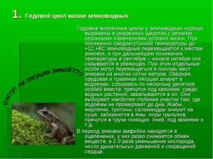 1. Годовой цикл жизни земноводных Годовые жизненные циклы у земноводных хорош