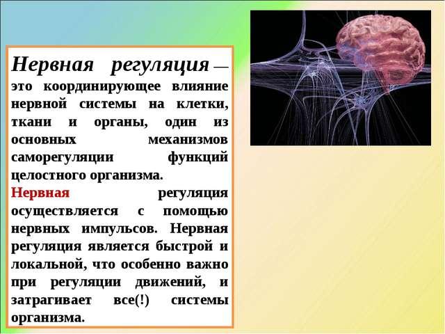 Нервная регуляция— это координирующее влияние нервной системы на клетки, тка...