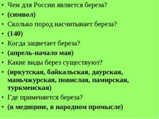 Чем для России является береза? (символ) Сколько пород насчитывает береза? (1