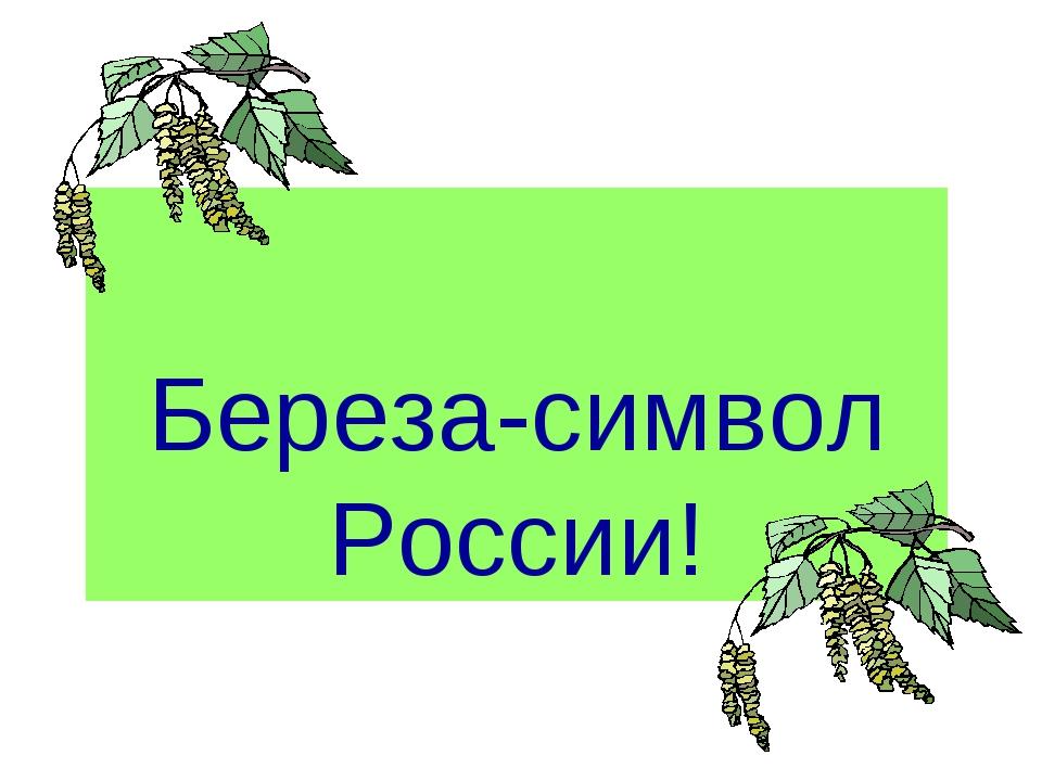 Береза-символ России!