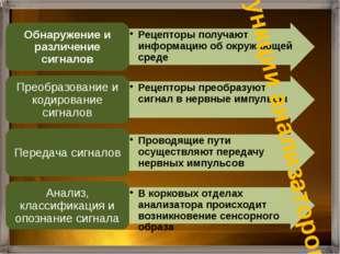 Функции анализаторов
