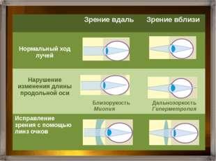 Нервные импульсы по зрительному нерву передаются в кору больших полушарий гд