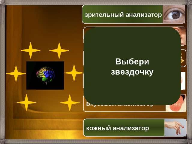 Выбери звездочку зрительный анализатор звуковой анализатор вестибулярный ана...