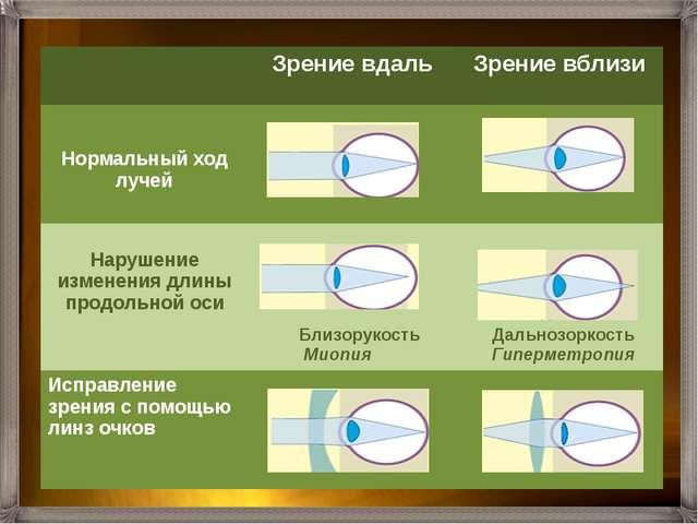Нервные импульсы по зрительному нерву передаются в кору больших полушарий гд...