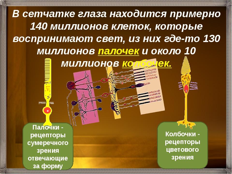 Восприятие цвета зависит от длины световых волн и яркости света. Наличие трёх...