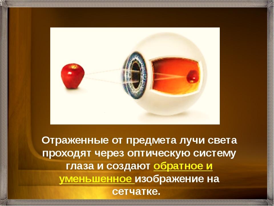 Близорукость (Миопия)– изображение формируется ближе сетчатки Нормальное зрен...