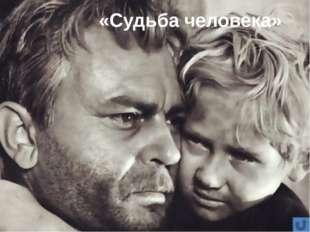 Анализ эпизода встречи с Ванюшей Можно ли считать личность А. Соколова героич