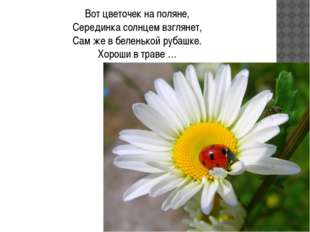 Вот цветочек на поляне, Серединка солнцем взглянет, Сам же в беленькой рубашк