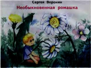 С. Воронин «Необыкновенная ромашка»