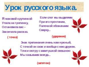 Урок русского языка. Я маковой крупинкой Упала на тропинку, Остановила вас –