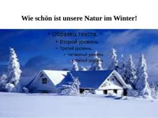 Wie schön ist unsere Natur im Winter!