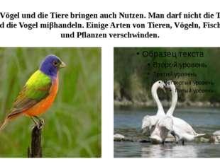 Die Vögel und die Tiere bringen auch Nutzen. Man darf nicht die Tiere und die