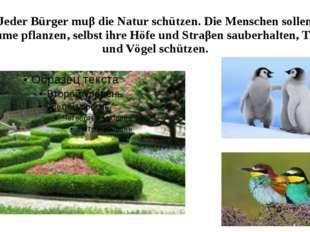 Jeder Bürger muβ die Natur schützen. Die Menschen sollen Bäume pflanzen, selb