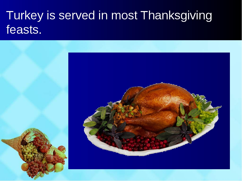 Turkey is served in most Thanksgiving feasts.