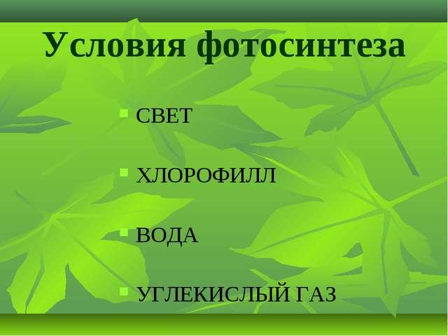 Условия фотосинтеза СВЕТ ХЛОРОФИЛЛ ВОДА УГЛЕКИСЛЫЙ ГАЗ