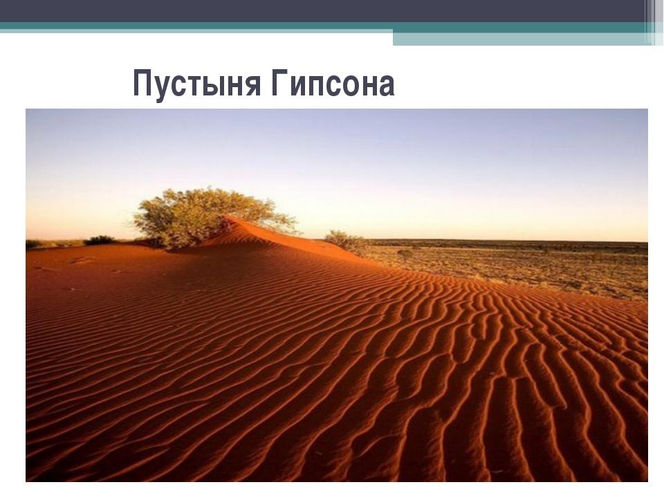 Пустыня Гипсона