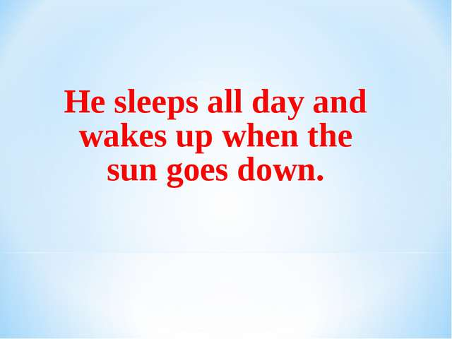 He sleeps all day and wakes up when the sun goes down.