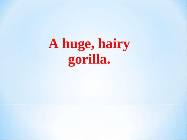 A huge, hairy gorilla.