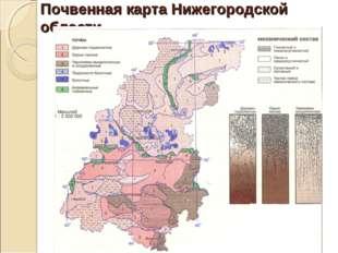 Почвенная карта Нижегородской области