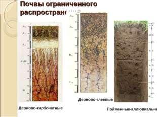 Почвы ограниченного распространения Дерново-карбонатные Дерново-глеевые Пойме