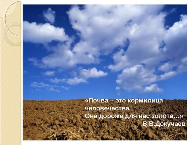 «Почва – это кормилица человечества. Она дороже для нас золота…» В.В.Докучаев