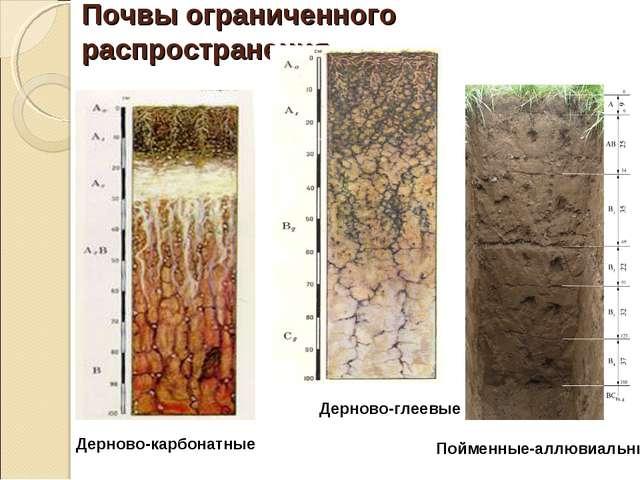 Почвы ограниченного распространения Дерново-карбонатные Дерново-глеевые Пойме...