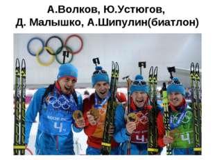 А.Волков, Ю.Устюгов, Д. Малышко, А.Шипулин(биатлон)