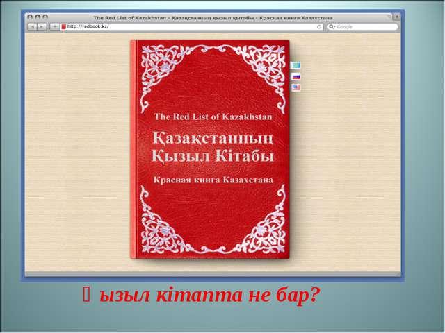 Қызыл кітапта не бар?