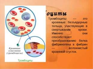 Тромбоциты Тромбоциты — это кровяные безъядерные тельца, участвующие в сверт