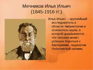 Мечников Илья Ильич (1845-1916 гг.) Илья Ильич – крупнейший исследователь в