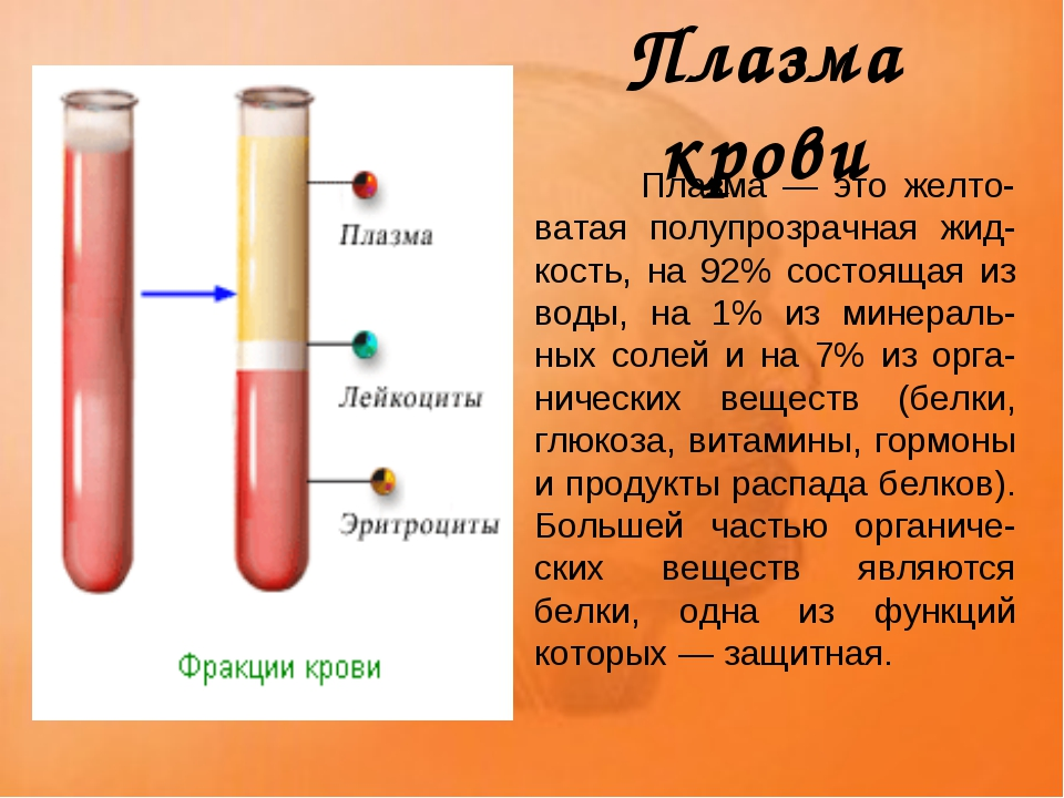 Плазма крови Плазма — это желто-ватая полупрозрачная жид-кость, на 92% состо...