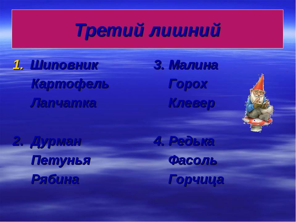 Третий лишний Шиповник Картофель Лапчатка 2. Дурман Петунья Рябина 3. Малина...
