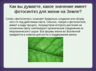 Как вы думаете, какое значение имеет фотосинтез для жизни на Земле? Слово «фо