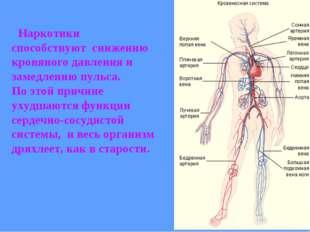 Наркотики способствуют снижению кровяного давления и замедлению пульса. По э