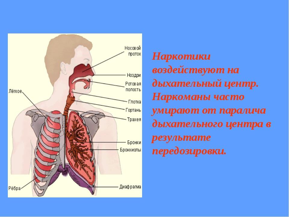 Наркотики воздействуют на дыхательный центр. Наркоманы часто умирают от парал...