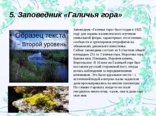 5. Заповедник «Галичья гора» Заповедник «Галичья гора» был создан в 1925 году