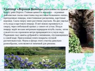 Урочище «Воронов Камень»расположено на правом берегу реки Воргол. Главная ц