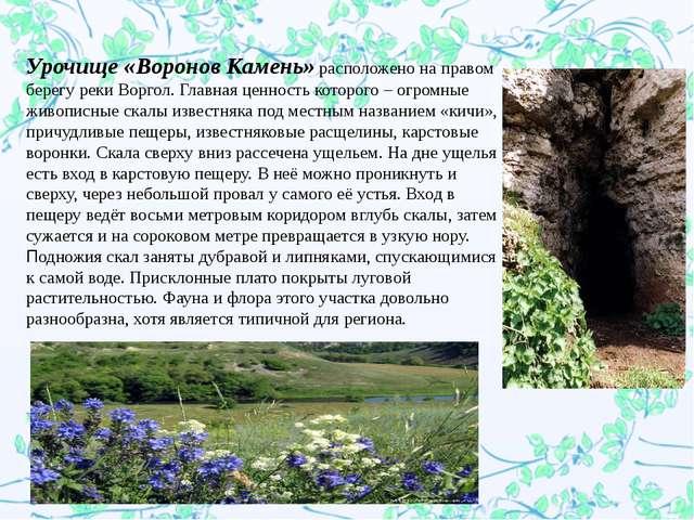 Урочище «Воронов Камень»расположено на правом берегу реки Воргол. Главная ц...