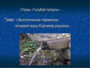 Отряд «Голубой патруль» Тема: «Экологические параметры питьевой воды Корнеева