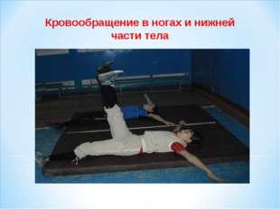 Кровообращение в ногах и нижней части тела