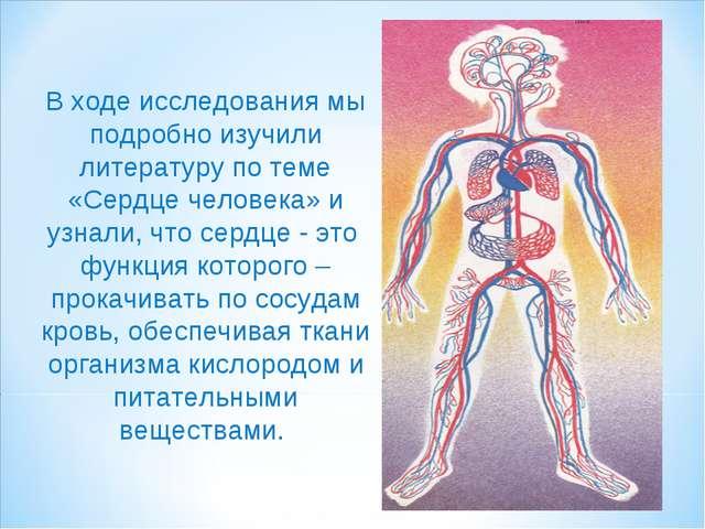 В ходе исследования мы подробно изучили литературу по теме «Сердце человека»...