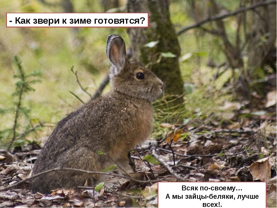 - Как звери к зиме готовятся? Всяк по-своему… А мы зайцы-беляки, лучше всех!.