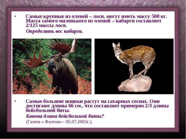 Самые крупные из оленей – лоси, могут иметь массу 500 кг. Масса самого малень...