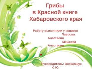 Грибы в Красной книге Хабаровского края Работу выполнили учащиеся Лаврова Ан