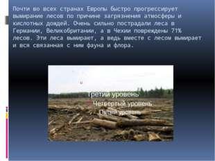 Почти во всех странах Европы быстро прогрессирует вымирание лесов по причине