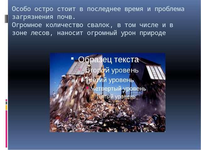 Особо остро стоит в последнее время и проблема загрязнения почв. Огромное кол...