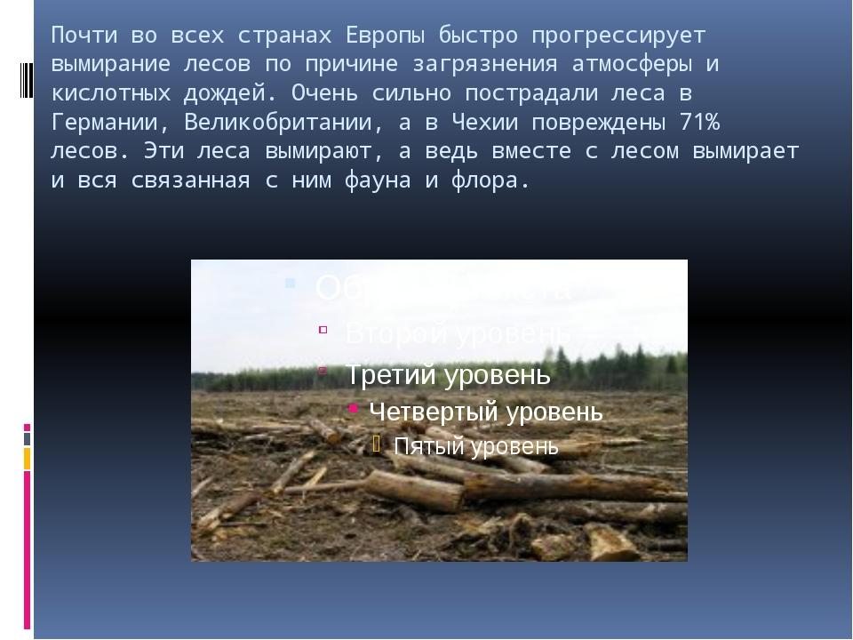 Почти во всех странах Европы быстро прогрессирует вымирание лесов по причине...